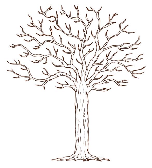 Шаблон коричневого свадебного дерева